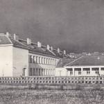 Służew. szkoła TPD, 1954 zm
